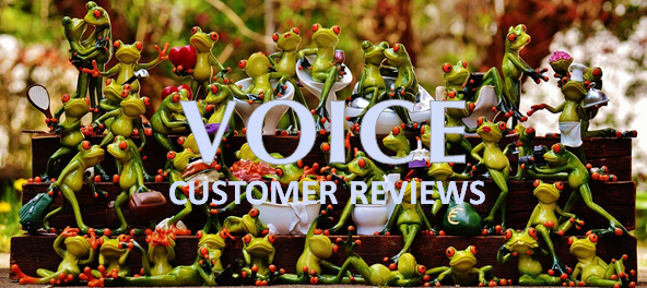 E-CUSTOMER REVIEWS